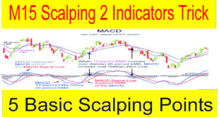 5 Basics Of Scalping M15 Best Forex 2 Indicators Trading Strategy