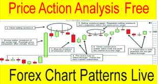 Live Forex Price Action Analysis Tani Forex Tutorial in Hindi Urdu