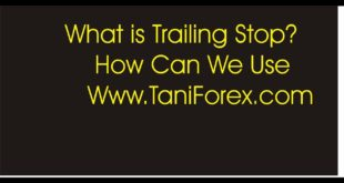 What is Trailing Stop In Forex Definition and Benefits