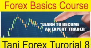 Forex Basics Course For Beginners online You tube Video Part 8