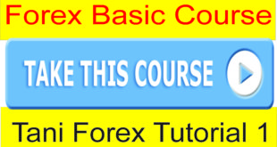 Forex Basics Course For Beginners online Video Part 1 In Urdu and Hindi by Tani Forex 100% Free