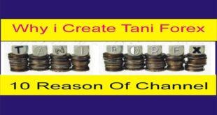 why i created Tani Forex? 10 Basic Reasons of Tani Forex You Tube Channel in Urdu Hindi