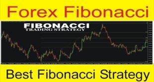 What is Fibonacci ! Fibonacci Forex Trading Strategies in Urdu and Hindi tutorial By Tani Forex