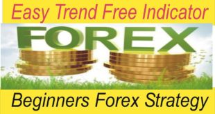 Simple Forex trading strategies for beginners ! Easy Trend Forex Trading Indicator By Tani Forex