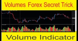 Forex Volumes Secret Strategy | Volume Trading Indicator Tutorial in Urdu and Hindi By Tani Forex