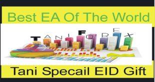 Best Forex EA Free| Forex Martingale Hedging Free Rebot| Tani Expert Advisor | Tani Forex Eid Gift