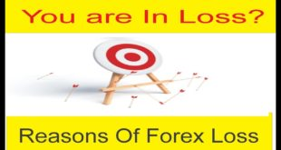 Why We Are In Loss | Basic Reasons Of Loss In Forex Trading New Urdu & Hindi Tutorial by TaniForex