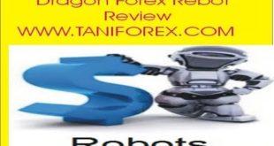 Dragon Expert Advisor Review Dragon Auto Trading Rebot Forex EA Information In Urdu Hindi Tani Forex