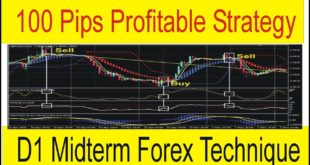 100 Pips Take Profit | D1 Best Forex Profitable Strategy | Bollinger Bands Indicator By Tani Forex
