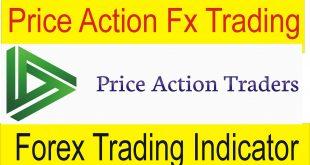 Price Action VS Forex trading indicator Forex basics information In Urdu by Tani Forex