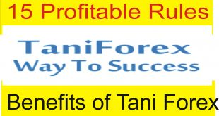 15 Profitable And Secret Rules of Tani Forex
