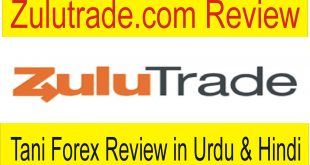 Zulutrade Auto Copy Trading Review by Tani Forex in Urdu
