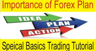 Importance of Plan in Forex Trading Business | Special Basics Tutorial by Tani Forex in Urdu & Hindi