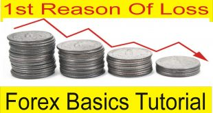 No 1 Reason of Loss in Forex Trading Special Tutorial For beginners