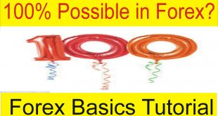 100% Profit Possible For me in Forex Trading