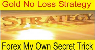 Gold No Loss Trading Secret Strategy by Tani Forex