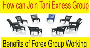 How can Join Tani Forex Exness Group | Benefits of Group Trading Tani Forex tutorial in Urdu hindi