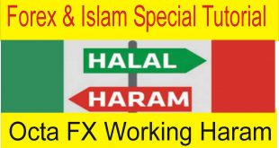 Octa FX Broker Forex Trading Haram in Islam | Special Tutorial in Urdu and Hindi by Tani Forex