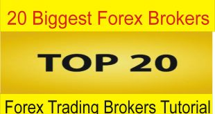 Top 20 Biggest Forex Brokers Of The World