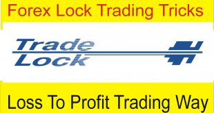 Forex Trades Lock Trading Trick   Hedging Trading Secret Way By Tani Forex in Urdu and Hindi