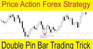 Price Action Forex Trading Strategy | Double Pin Bar Secret Trick by Tani Forex in Urdu & Hindi