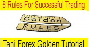 8 Golden Rules For Successful Trading Forex Business Special Tutorial