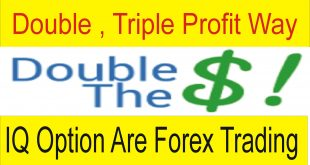 Double , Triple Profit Tutorial IQ Are Forex Best High Profit way
