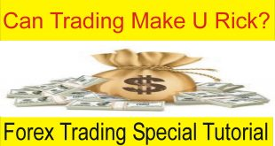 Can Forex Trading Make You Rich? Tani Forex in Urdu