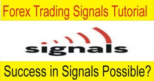 Success And Forex Trading Signals Tani Forex in Urdu