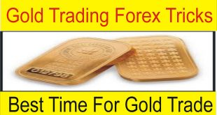 Best Time For Gold Trading Tani Forex in Urdu