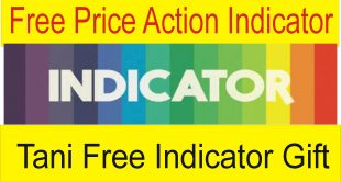 Divergence Price Action Best Indicator Free Download