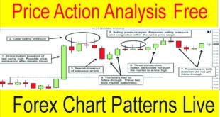 Live Forex Price Action Analysis Tani Forex Tutorial in Hindi Urdu