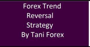 Forex Trend Scanner Forex Trend Reversal Strategy By Tani Forex in Urdu Hindi