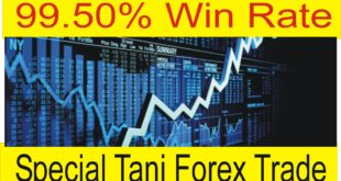99.50% Forex Trade Trick No Chance Of Loss Just Profit
