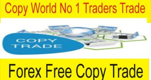 Copy Free Trade 99 Best Forex Traders Find Live Trade Free