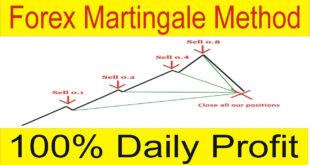 What is Martingale Forex Trading System Profitable and Easy Way In Urdu Hindi by Tani Forex