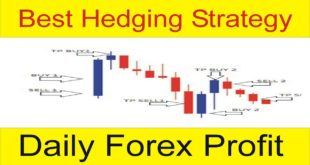 My Secret Hedging Profitable Strategy with 2 Indicators Mix Up in Hindi and Urdu by Tani Forex