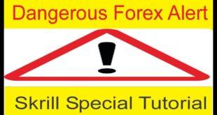 Dangerous Alert | Must Remember This Skrill Secret Points Tani Forex Basic Tutorial in Urdu & Hindi