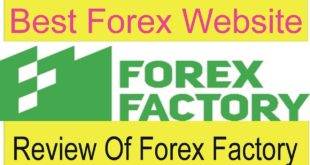 Review Of forexfactory.com | Best Forex Free website of the world Tani Forex Review in Urdu & Hindi
