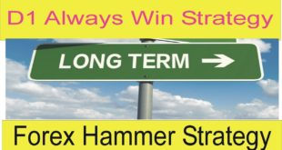 D1 Forex Always Profitable Special and Secret Strategy | Long Term Forex Trading Hammer Strategy