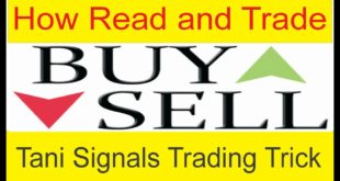 How Can Read and Work On TaniForex Live Signals | Forex Signals Secret Trick in Urdu By Tani Forex