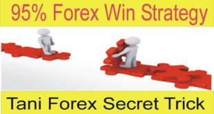 5 Secret Things about Gap Forex Strategy | Result Of Tani Forex Gap Strategy In Hindi and Urdu