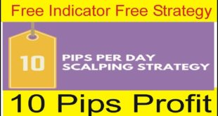 10 Pips Forex Trading Strategy With Free Indicator Free Trick In Urdu and Hindi By Tani Forex