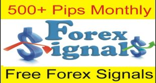 Tani Forex New Free Forex Signals Service Free 500 To 1000 Pips Monthly New Tutorial in Urdu Hindi