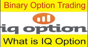 What is Binary Option? Definition of IQ Option New Tutorial in Urdu and Hindi by Tani Forex