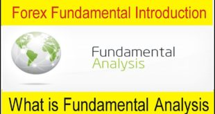 What Is Fundamental Analysis In Stock Market | Introduction Of Forex Fundamental By Tani Forex