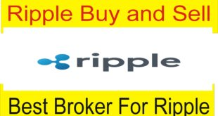 Buy and Sell Ripple Online Cryptocurrencies Tutorial by Tani Forex