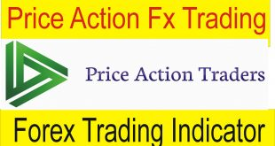 Price Action VS Forex trading indicator Forex basics information In Urdu by Tani Forex