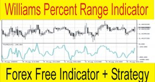 Free Forex Williams Percent Range Indicator and Strategy