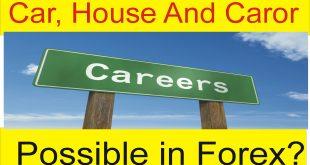 What is my Career in Forex trading? Tani Forex Urdu Tutorial
